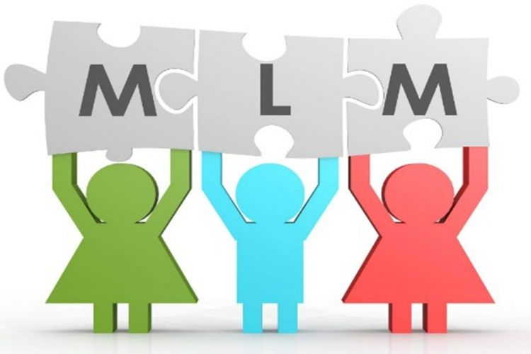Jasa Pembuatan MLM