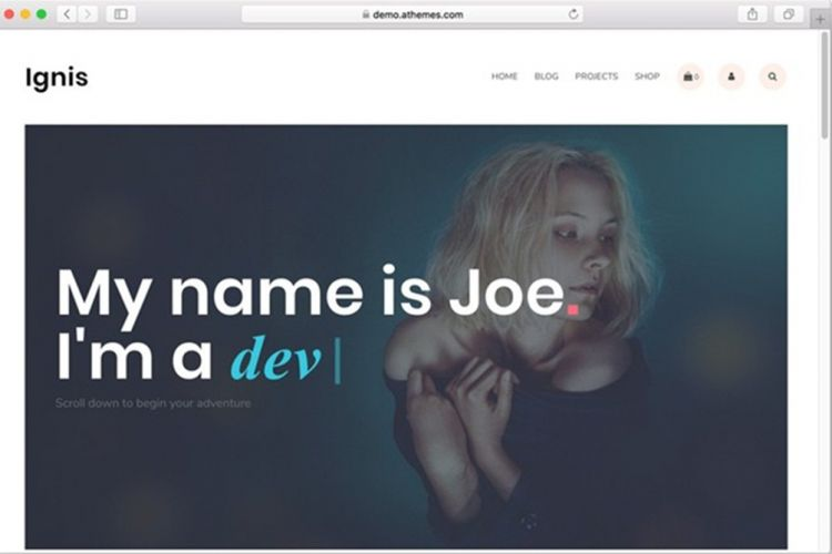 Template Portfolio WordPress Ignis
