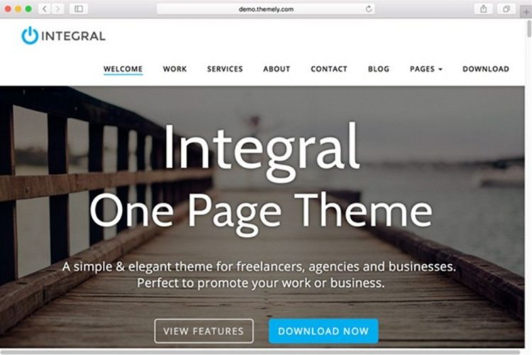 Template Portfolio WordPress Integral
