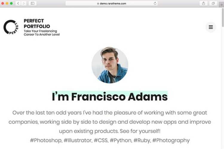 Template Portfolio WordPress Perfect Portfolio